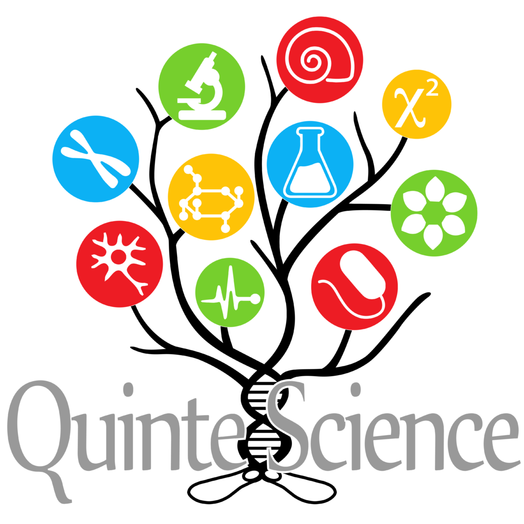 logo-quintescience-2