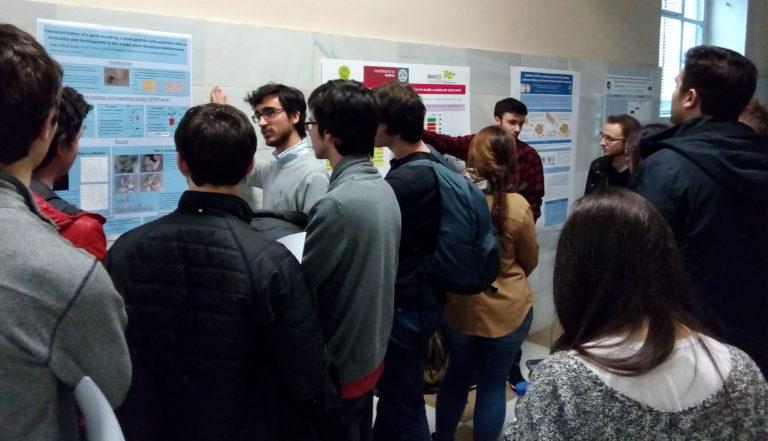 Participantes del concurso de póster exponiendo sus trabajos